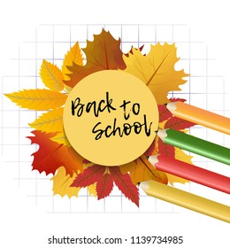 Design template Back to School with maple and rowan leaves for banner or poster. Colorful background with cell and pencil. Vector  Illustration.