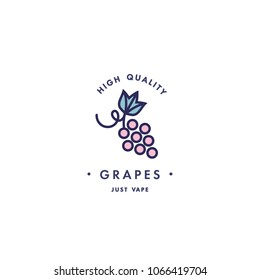 Design template logo and emblem - taste and liquid for vape - grapes. Logo in trendy linear style