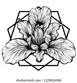 Design for your T-shirt Pattern for coloring book. Hand drawn line art of flower iris. For tattoo