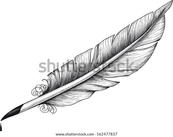 Detail Drawn Vintage Quill Poets Writers Stock Vector