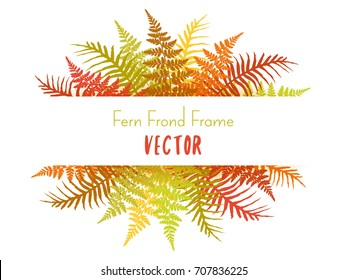 Detailed bracken and silver fern drawing, tropical forest herbs, fern frond grass card border. Realistic polypodiophyta plant leaves decoration background. Fern frame vector illustration.