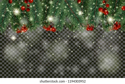 Detailed Christmas tree branches and christmas berry on transparent background. Christmas decoration. Realistic fir tree border. New Year design for cards, banners, flyers, party posters, headers.