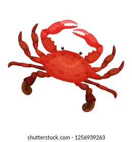 Detailed flat vector icon of bright red crab. Marine animal with claws. Seafood theme
