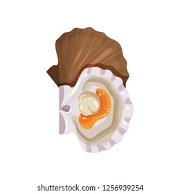 Detailed flat vector icon of open scallop. Edible marine mollusk. Tasty sea product. Seafood theme
