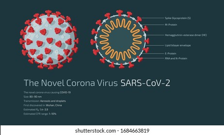 Detailed flat vector illustration of the structure of The Novel Corona Virus SARS-CoV-2, the virus causing COVID-19. Feel free to also use only parts of the illustration.