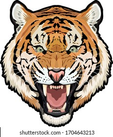 Detailed full-color tiger head vector illustration isolated