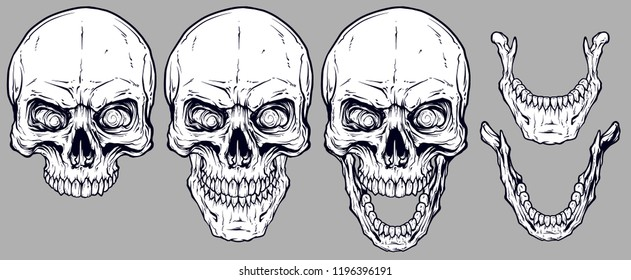 Detailed graphic realistic cool white human skulls and lower jaws. On gray background. Vector icon set.