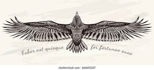 Detailed hand drawn condor for tattoo art . Boho chic.Vector illustration. Flight of falcon on grunge background.