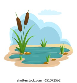 Detailed illustration of summer pond and grass