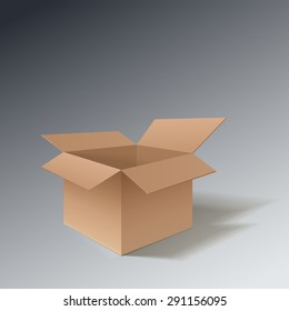 Detailed open cardboard box. Point of view from the side. Isolated on a gray background. Vector illustration.