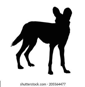 Detailed Silhouette of Alert Wild Dog