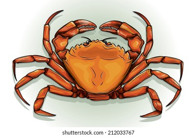 Detailed vector drawing of a Crab/Crab/Easy to edit layers and groups ne meshes or blends or transparencies used on crab just on background layer.