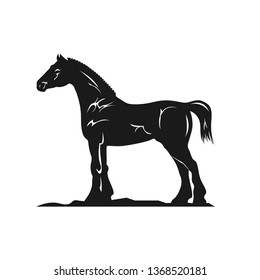 Detailed Vector silhouette of a Horse breed Clydesdale.