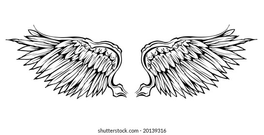 detailed vector wing