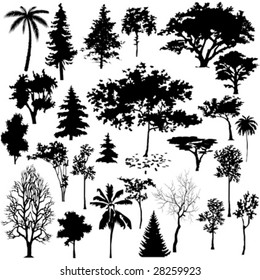 Detailed vectoral tree silhouettes.