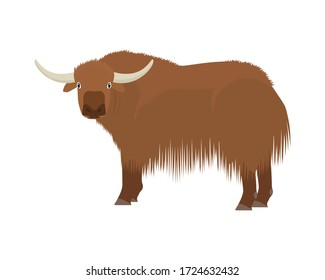Detailed Yak with Standing Gesture Illustration
