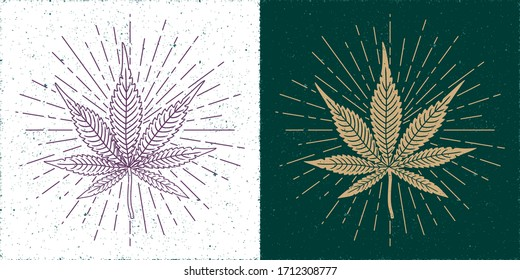 Detalized Marijuana or Cannabis Straight and Inverted Leaves with Rays Circles Set Yin Yang Style Compositin - Gold and Purple on White and Turquoise Background - Vector Vintage Graphic Design