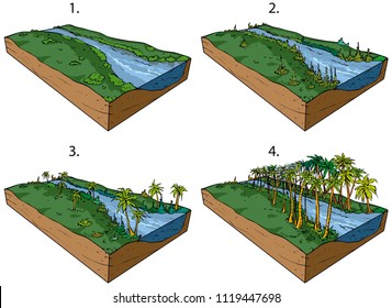 The development of the living world on land in the Palaeozoic