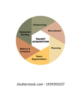 Diagram concept with Talent Acquisition text and keywords. EPS 10 isolated on white background