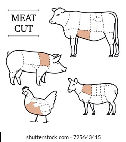 Cow diagram images stock photos vectors shutterstock diagram of cutting meat set of vector signs on white background ready for use ccuart Gallery