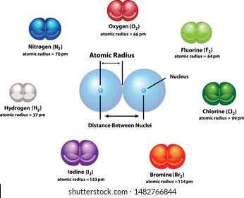 Diagram explaining Atomic Radius using diatomic molecules. Oxygen, hydrogen, nitrogen, fluorine, chlorine, bromine, and iodine. Shows the nucleus and distance between nuclei.