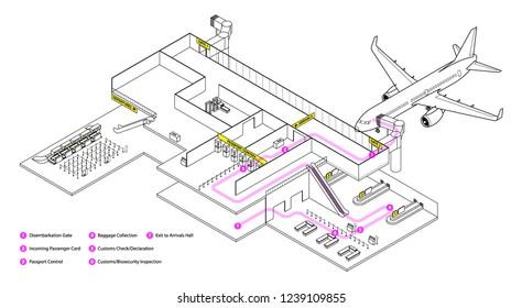 Diagram of navigating an airport. Generic steps to disembarking an international flight arrival.