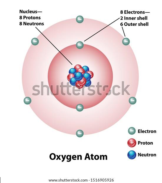 Diagram Oxygen Atom Nucleus Inner Outer Stock Vector