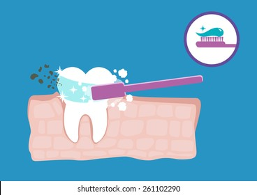 Diagram of a Root Tooth Anatomy with dirt or decay being Brushed Away by a Bubbling Toothpaste and Flouride Gel. Editable EPS10 vector illustration and large jpg.