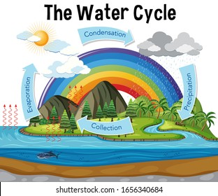 Diagram showing water cycle with rainfall and ocean illustration