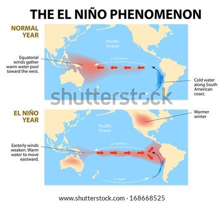 diagram shows el nino phenomenon el stock vector (royalty freediagram shows the el nino phenomenon el niño is a disruption of the ocean and