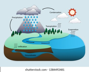 Diagram of Water Cycle in nature, vector illustration eps10