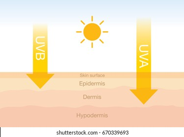 The difference of radiation 2 types in sunlight which is harmful to the skin.Illustration about UVA penetrate deep than UVB.