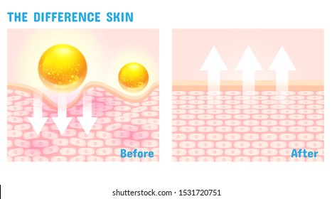 The difference skin structure before and after with vitamin or serum vector