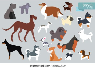 Different Breeds Of Dog. Vector Collection.