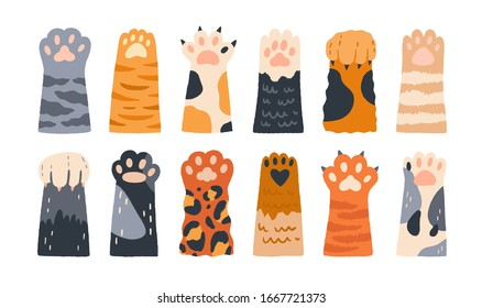 Different cartoon colored cat paws set vector graphic illustration. Collection of various cute cartoon domestic animal foot isolated on white background. Funny fur pet dangerous claws