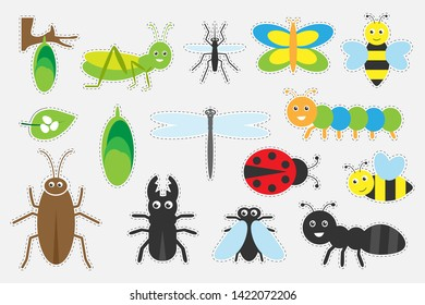 Different colorful insects pictures for children, fun education game for kids, preschool activity, set of stickers, vector illustration