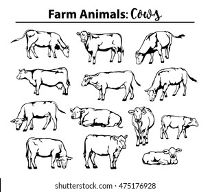 Different cows set in contour, outline. Side view, front view, laying, standing, grazing, walking etc