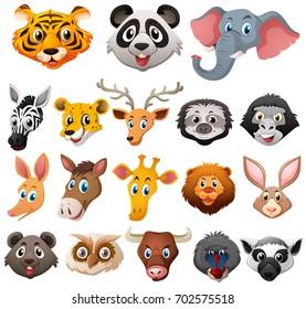 Different faces of wild animals illustration