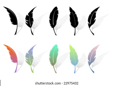 Different feather silhouettes and colored feathers over white