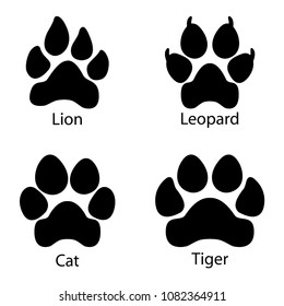 Different footprints of big cats. Leopard, lion, tiger paws set illustration
