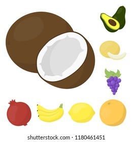 Different fruits cartoon icons in set collection for design. Fruits and vitamins vector symbol stock web illustration.