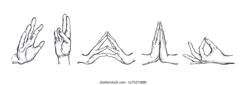 Different gestures of human hands isolated on a white background. Vector illustration of female hands in different Yoga Mudras. Vector hand drawn