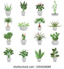 Different green homeplants color flat icons set