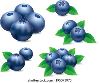 different groups of blueberries on white