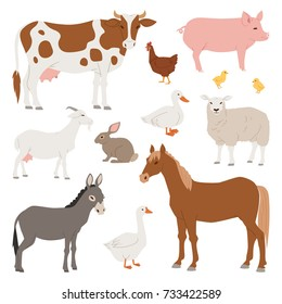 Different home farm vector animals and birds like cow, sheep, pig, duck farmland set illustration