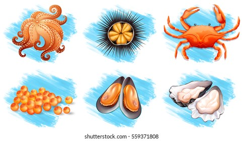 Different kinds of fresh seafood illustration