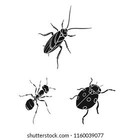 Different kinds of insects black icons in set collection for design. Insect arthropod vector isometric symbol stock web illustration.