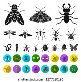 Different kinds of insects black,flat icons in set collection for design. Insect arthropod vector symbol stock web illustration.