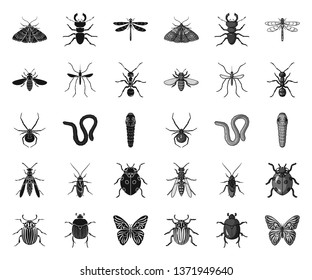 Different kinds of insects black.mono icons in set collection for design. Insect arthropod vector symbol stock web illustration.
