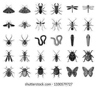 Different kinds of insects black,monochrome icons in set collection for design. Insect arthropod vector symbol stock web illustration.
